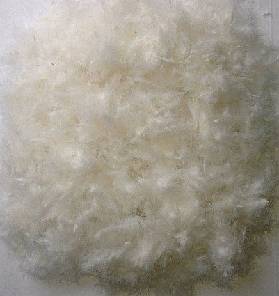 Bulk Goose Down And Feathers 50 White Goose Down 50